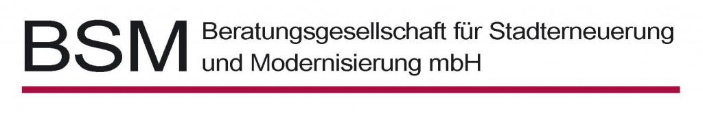 BSM Logo - 2010_01